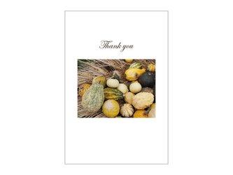 かぼちゃの39cardの画像