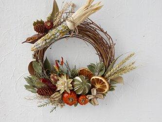 (再販)Harvest autumn wreath・neoの画像