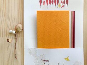 いろいろな葉っぱ レターセットの画像