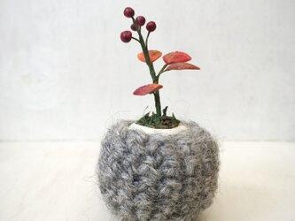 5106. bud 粘土の鉢植え お包みの画像
