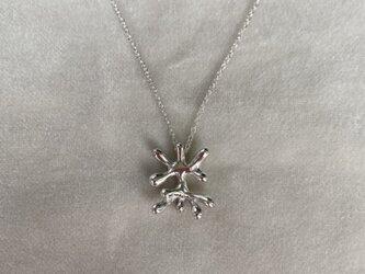 Jatropha necklace ーヤトロファーの画像