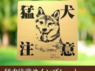【送料無料】猛犬注意サインプレート(柴犬)GOLDアクリルプレートの画像
