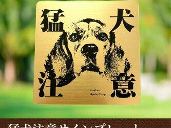 【送料無料】猛犬注意サインプレート(ビーグル)GOLDアクリルプレートの画像