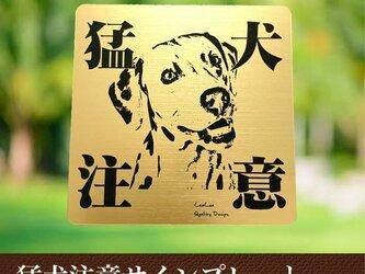 【送料無料】猛犬注意サインプレート(ダルメシアン)GOLDアクリルプレートの画像