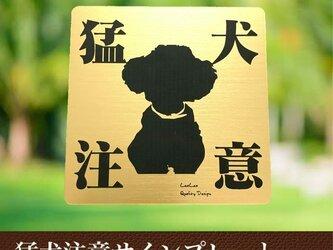 【送料無料】猛犬注意サインプレート(トイプードル )GOLDアクリルプレートの画像