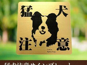 【送料無料】猛犬注意サインプレート(ボーダーコリー)GOLDアクリルプレートの画像