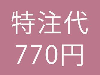 特注代 税別700円 (税込770円) ※ご注文前にお問合せください。の画像