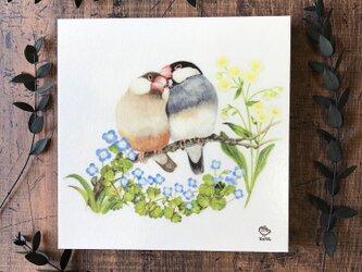 「文鳥 〜ふたりの時間〜」の18x18cm パネルの画像