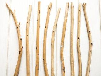 流木素材 セット [約L27~29.3cm] #042の画像