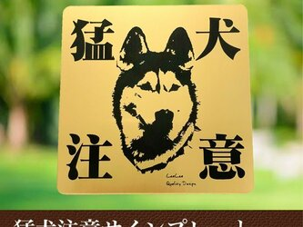 【送料無料】猛犬注意サインプレート(シベリアンハスキー)GOLDアクリルプレートの画像