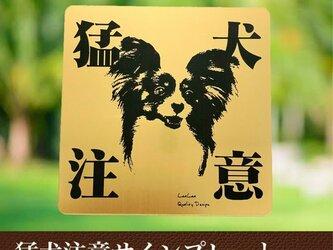 【送料無料】猛犬注意サインプレート(パピヨン)GOLDアクリルプレートの画像