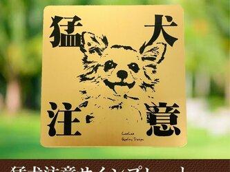 【送料無料】猛犬注意サインプレート(チワワ)GOLDアクリルプレートの画像