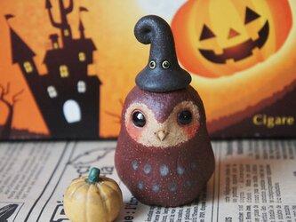 陶器【フクロウとカボチャとトンガリ帽子】の画像