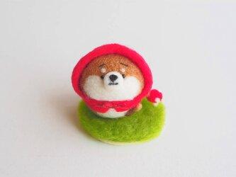 【受注製作】赤ずきんなまゆ柴犬(赤柴・黒柴・白柴) 羊毛フェルトの画像