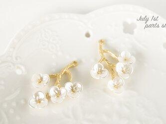【2個入】梅の花 パーツ 貝殻風 チャーム  マットゴールド H0010の画像