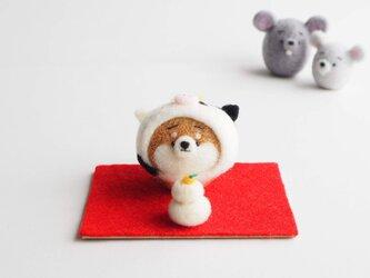 【受注製作】2021年干支(丑) なりきりうし(牛)のまゆ柴犬(赤柴・黒柴・白柴)正月飾りセット 羊毛フェルトの画像