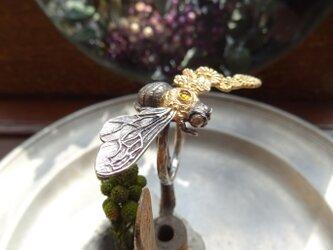 クマンバチの指輪の画像