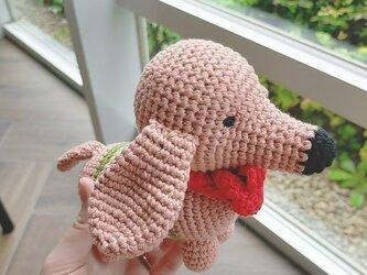 あみぐるみ いぬ  おもちゃ 出産祝い 男の子 女の子 子供 誕生日 編みぐるみ プレゼントの画像