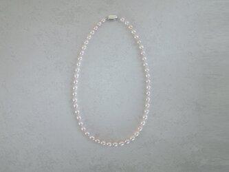 うすもも真珠のネックレスの画像