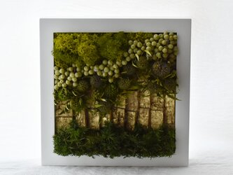 商品番号708「-森へつづく道-」プリザーブドアートフレームの画像