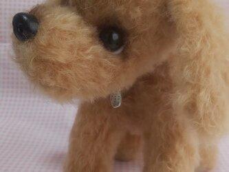 ふわふわぬいぐるみ☆ジューマンモヘア☆垂れ耳な犬の画像