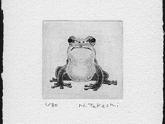 かえる・N/銅版画 (作品のみ)の画像