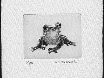 かえる・M/銅版画 (作品のみ)の画像
