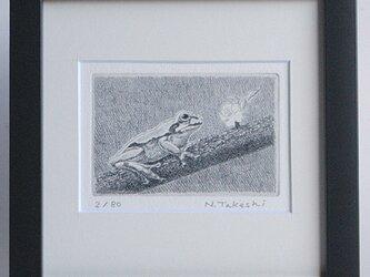 樹の上の蛙/銅版画 (額あり)の画像