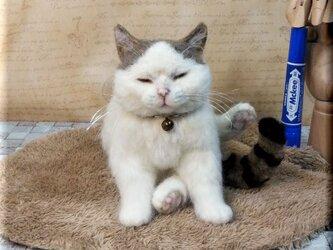 羊毛フェルト 猫 ブサかわ?キジシロ猫さん キジ白 ねこ ネコ 猫フィギュアの画像