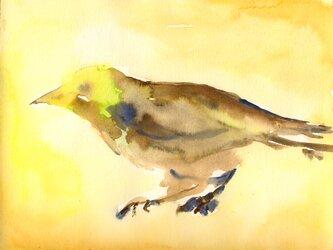 ポストカード <Abstract Bird> 2枚セットの画像