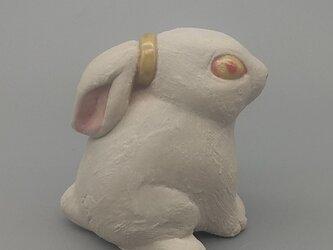 200gAs ポニーテールウサギの画像