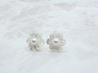Akoya Pearl & Mother of Pearl pierced earrings ②の画像