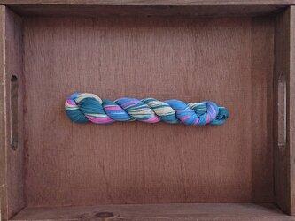 【売り切り】インダスからの贈り物【オリジナル段染め糸  細】(275) 1本の画像