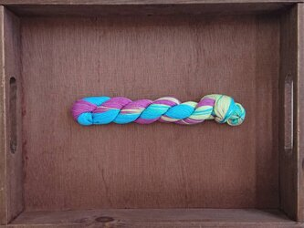 【売り切り】インダスからの贈り物【オリジナル段染め糸  細】(276) 1本の画像