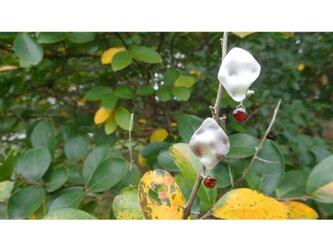 After the rain AW Pierced Earringsの画像