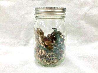 木の実の小瓶 Pinecone (S)の画像