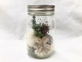 木の実の小瓶 Moss (S)の画像