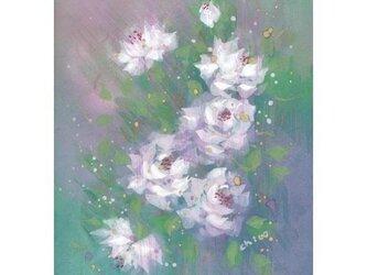 「fairy Rose's 」原画の画像