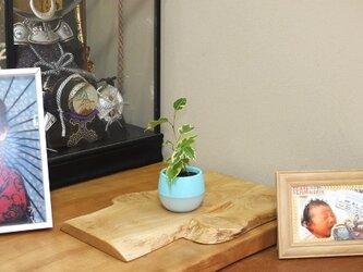 天然木花台・飾り台  No.15栗の天然木の画像