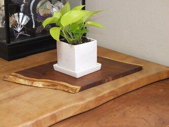 天然木花台・飾り台 NO.5 桑の天然木の画像