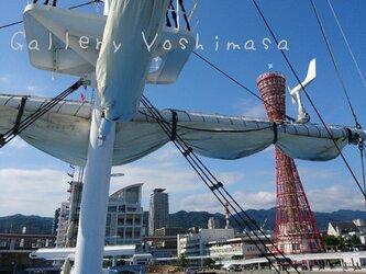 異国情緒漂う港町神戸 「神戸中突堤」 「港のある暮らし」A3サイズ光沢写真縦  写真のみ  神戸風景写真の画像