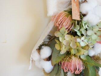 モコモコ綿の実とピンクッションのスワッグの画像