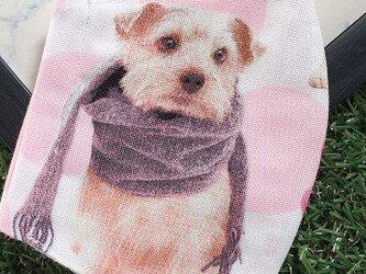 立体マスク キッズ オトナ 犬 イヌ DOGの画像