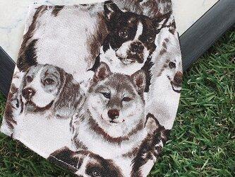 立体マスク キッズ オトナ イヌ 犬 DOGの画像