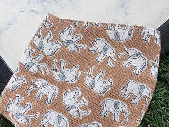 立体マスク キッズ オトナ ぞう ゾウ 象の画像