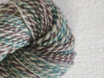 手紡ぎ毛糸:双糸 i-10-019の画像