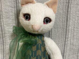 白猫 女の子の画像