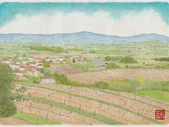 アレッツォ眺望 Ⅱ (再出品)の画像