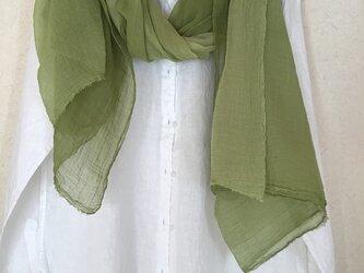 草木染め コットンショール コブナグサ 緑色の画像