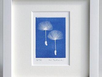 たんぽぽ/ 銅版画 (額あり)の画像